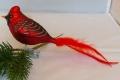 roter Kardinal, Naturfedern, 6-fach