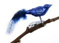 Mini-Vogel, Glimmerpunkte, farbige Perlhuhn-Feder, 12-fach
